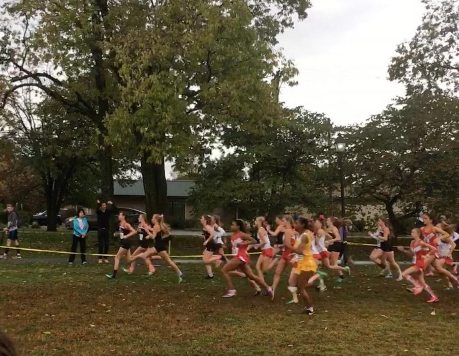 The girls' cross country team takes off for their regional meet. The team came in first place in the meet.