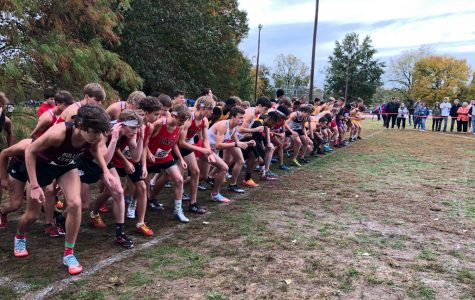 Manual boys' and girls' cross country dominate region three meet
