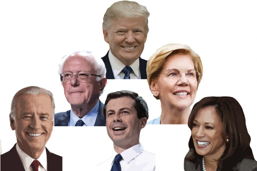 The top five democratic candidates in the 2020 presidential primary and Donald Trump are compared policy by policy. Illustrations by Anabel Magers.