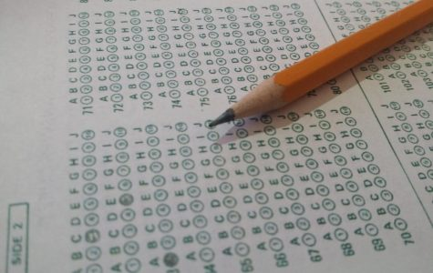 The standard bubble sheet lingers under a pencil, a common sight for many students preparing to take a test. Image licensed under Creative Commons CC0.