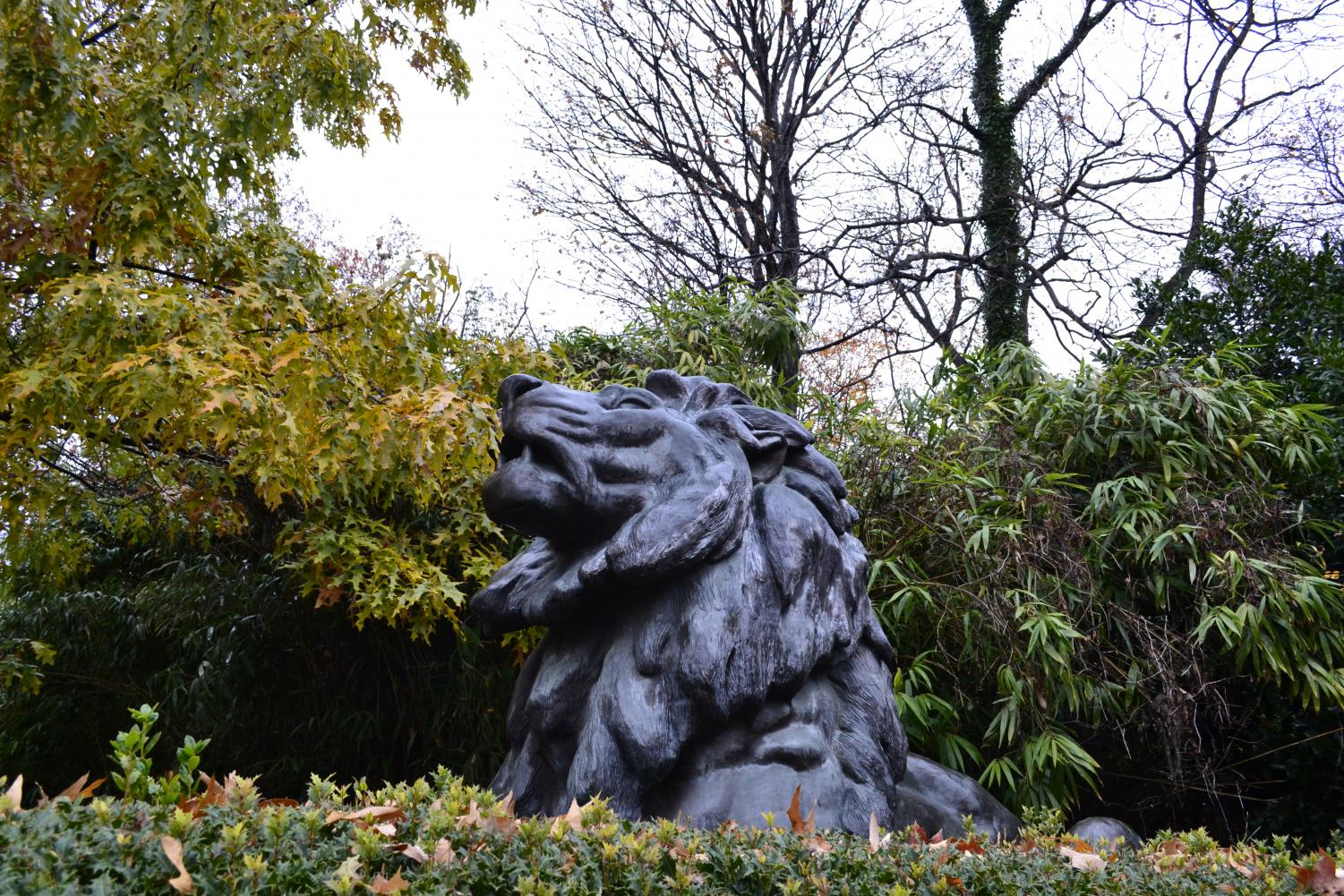 Lion at the entrance of the zoo.