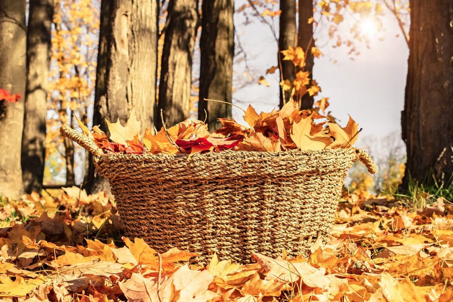 Fall October Basket Seasonal Autumn Thanksgiving