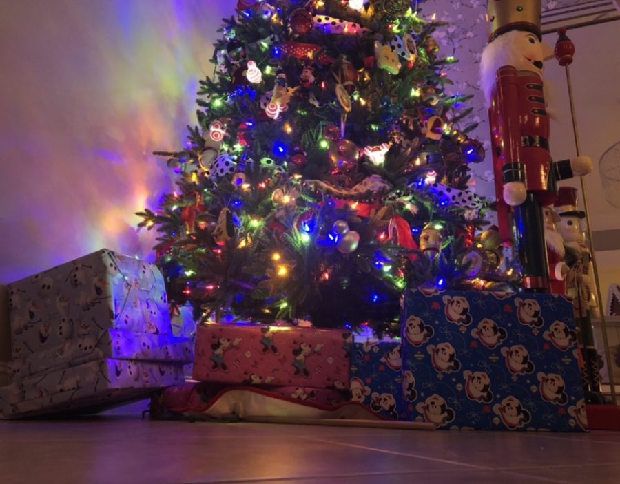 Christmas gifts under the tree. Photo by EP Presnell.