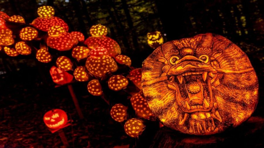 Photo Courtesy to the Jack O'Lantern Spectacular.