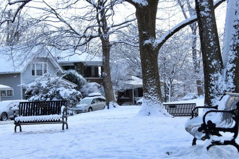 Snow falls heavily on a small park in Crescent Hill. Photo by Molly Gregory.