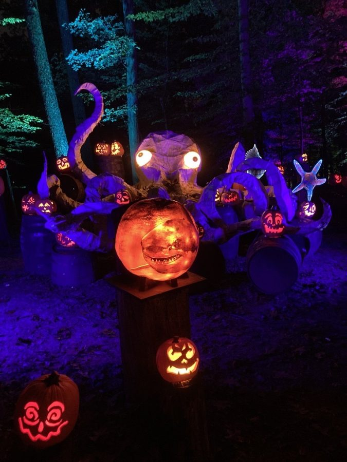 The Jack OLatern Spectacular features uniquely carved pumpkins. Photo by Kaelin Gaydos